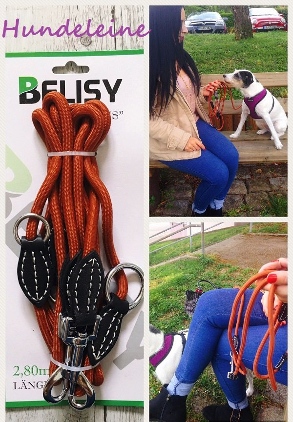 Kultige Hundeaccessoires für jeden Hundeliebhaber im Blog Label-Love