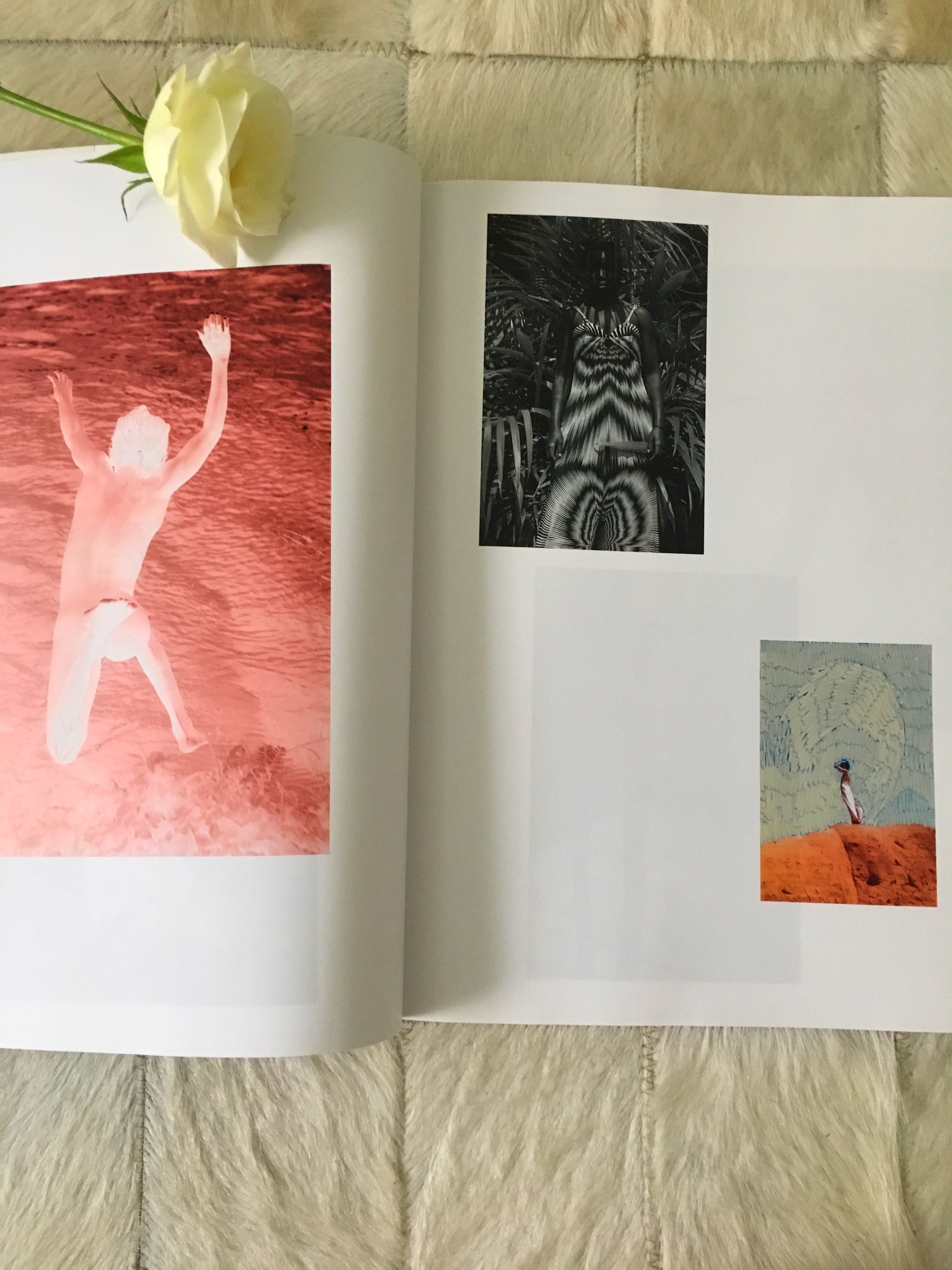 Hot Mirror von Viviane Sassen verbindet Fotokunst mit Gedichten.Sie ist eine der meistgefragten Fotokünstlerinnen ihrer Generation, die ich hier näher zeige