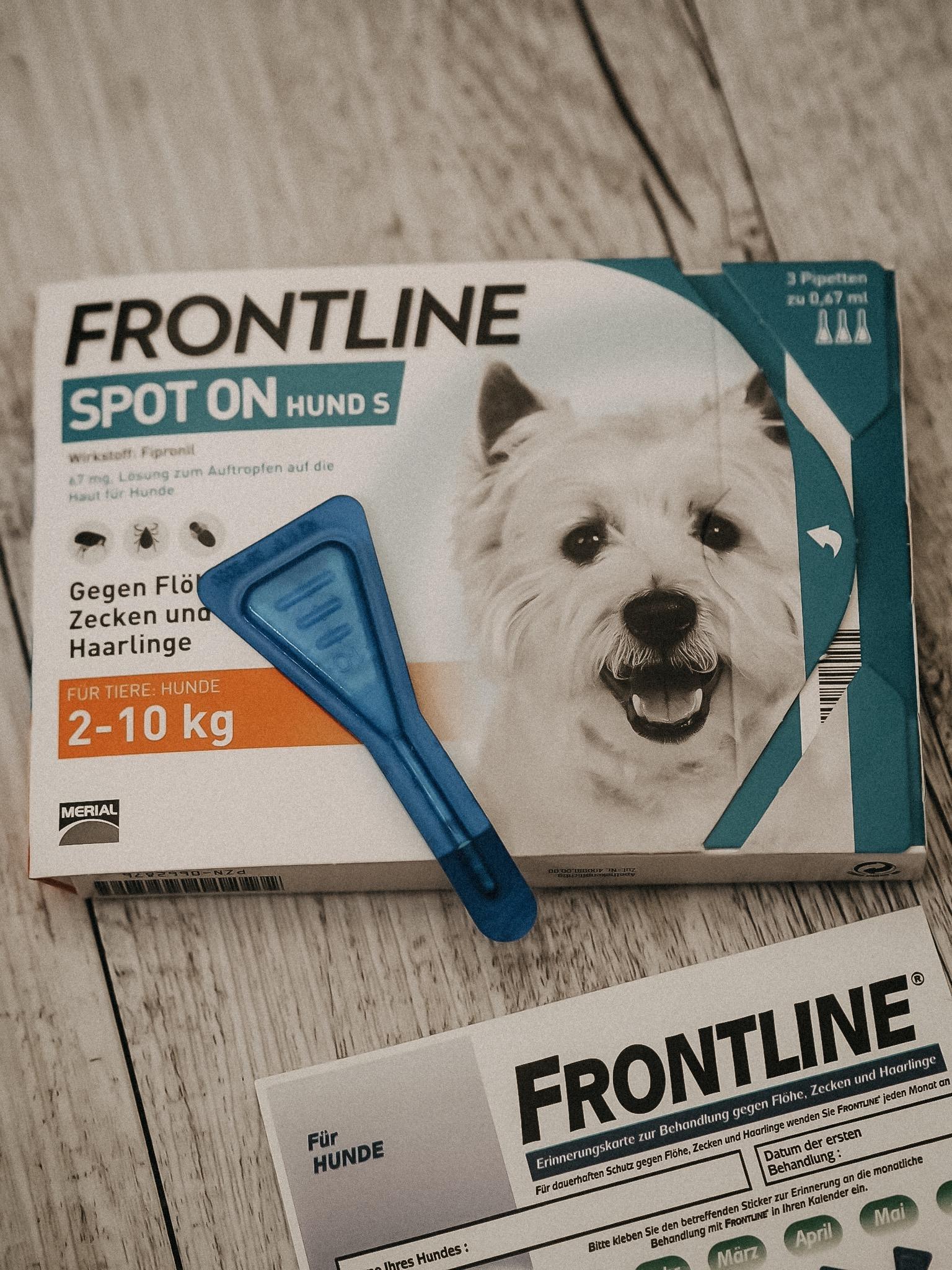 Mit dem SPOT ON von Frontline, das ich bei Europa-Apotheek bestellt habe, schütze ich meine Hündin vor lästigen Zecken, Flöhe und Haarigen im Handumdrehen.