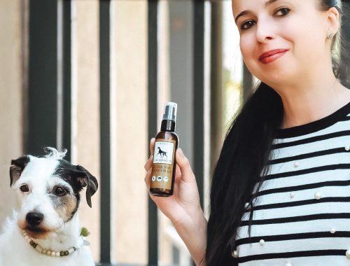 Lila Loves It ist eine top Marke für Hunde
