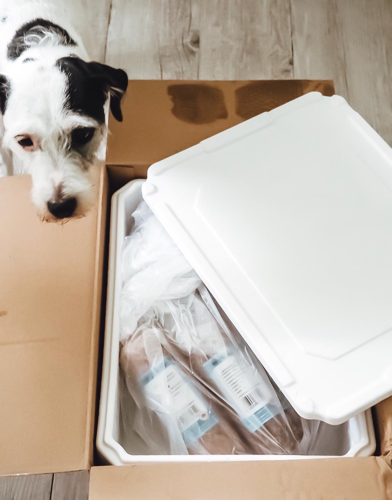 Barfen ist kein Hexenwerk mit dem hochwertigen Frostfutter Perleberg. Auf dem Blog in der Dog Stuff Kategorie stelle ich den Barf- Futter Online Shop vor.