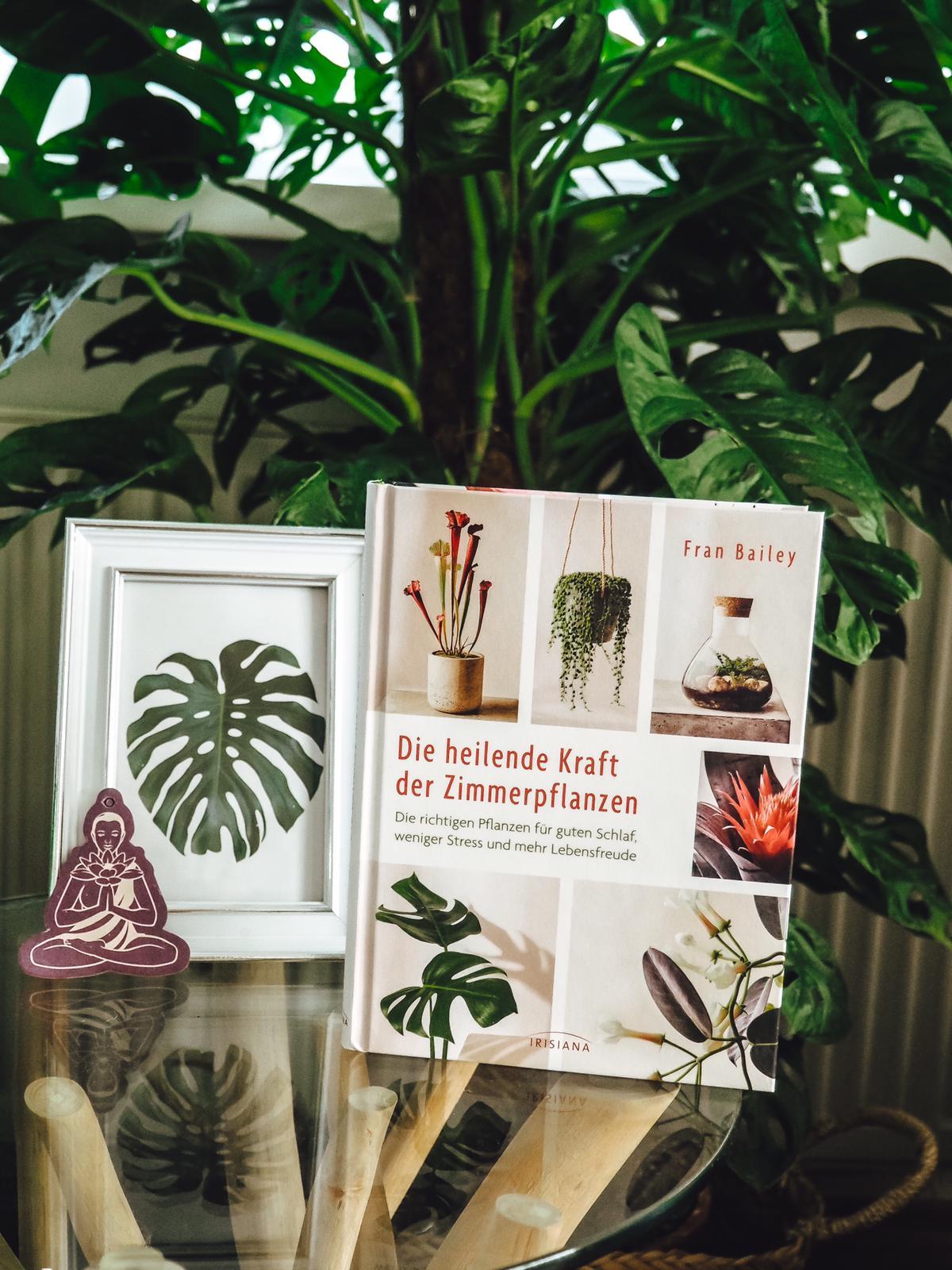 Buchtipps für Pflanzenfreunde - Die heilende Kraft der Zimmerpflanzen