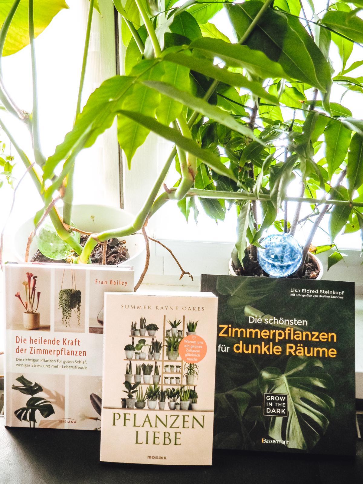 Buchtipps für Pflanzenfreunde - informative Ratgeber