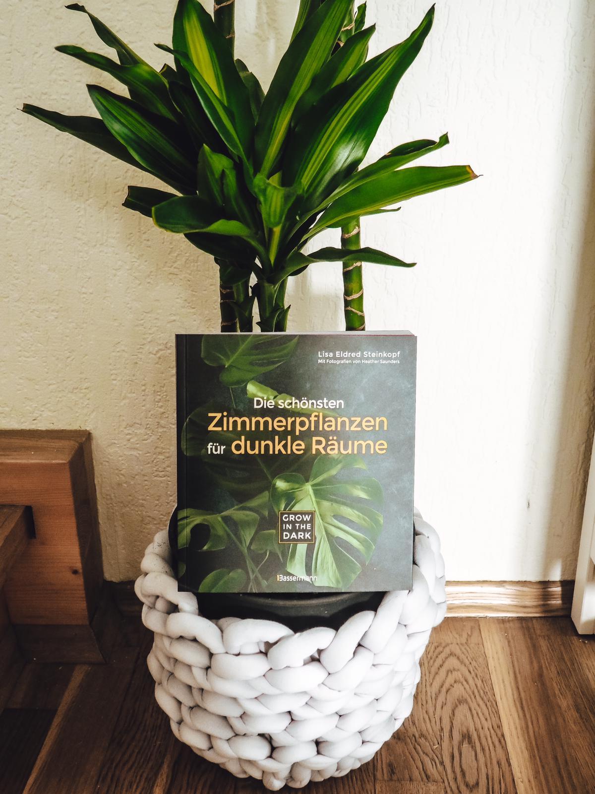 Buchtipps für Pflanzenfreunde- Die schönsten Zimmerpflanzen für dunkle Räume